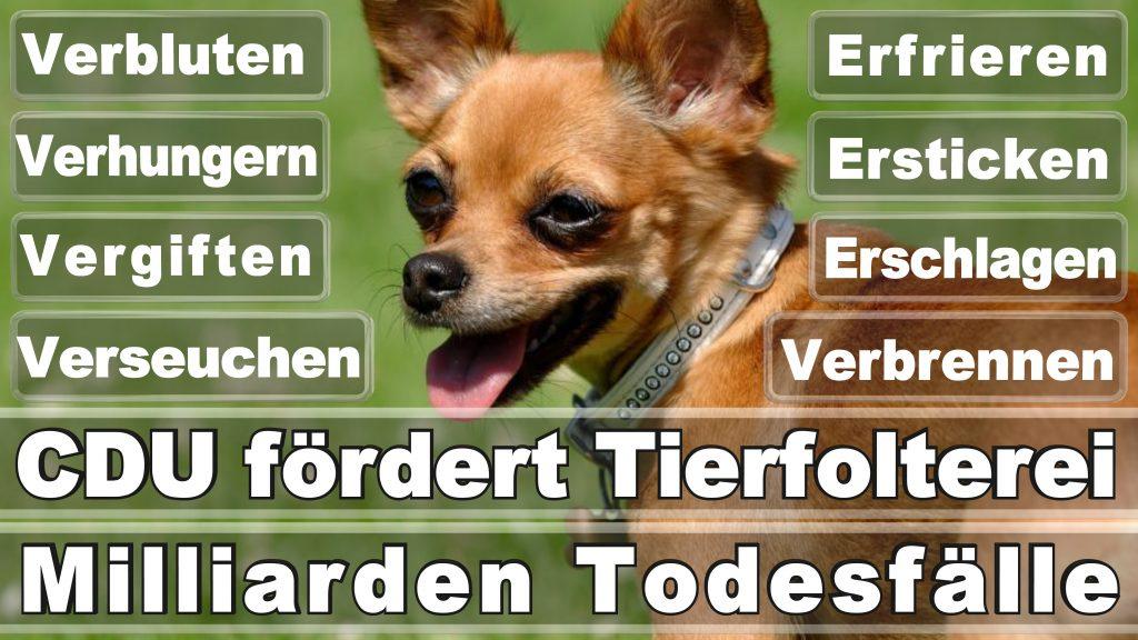 Angela Merkel CDU Tierversuche Tierquälerei Hauptschule Realschule Grundschule Gymnasium (12)