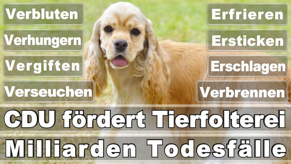 Angela Merkel CDU Tierversuche Tierquälerei Hauptschule Realschule Grundschule Gymnasium (16)