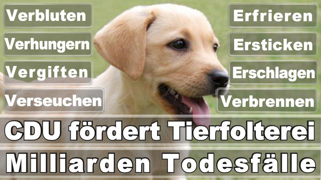 Angela Merkel CDU Tierversuche Tierquälerei Hauptschule Realschule Grundschule Gymnasium (17)