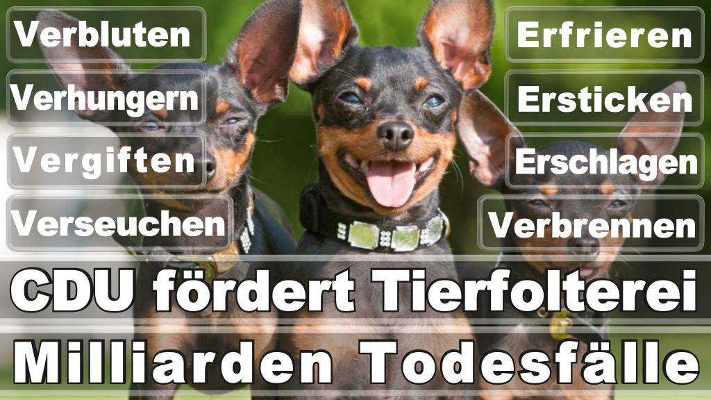 Angela Merkel CDU Tierversuche Tierquälerei Hauptschule Realschule Grundschule Gymnasium (2)
