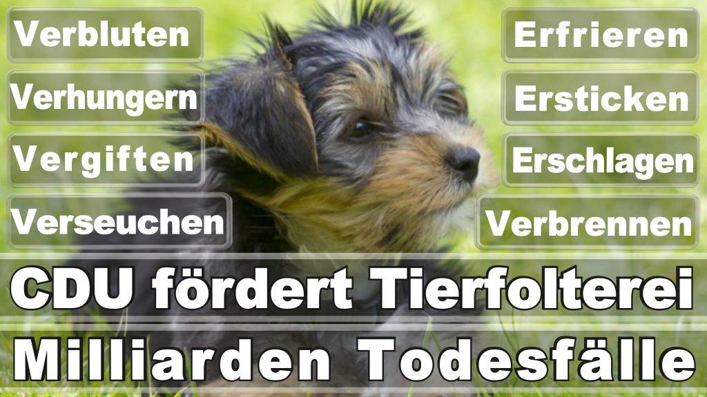 Angela Merkel CDU Tierversuche Tierquälerei Hauptschule Realschule Grundschule Gymnasium (20)