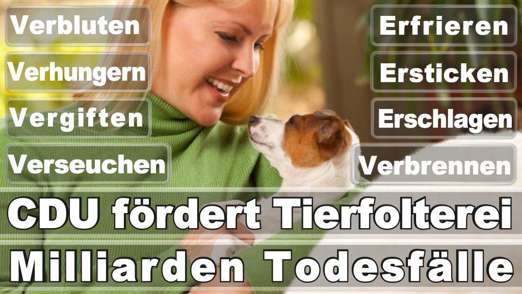 Angela Merkel CDU Tierversuche Tierquälerei Hauptschule Realschule Grundschule Gymnasium (3)