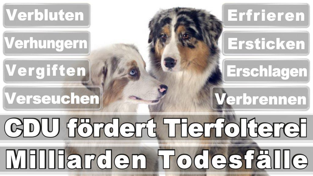 Angela Merkel CDU Tierversuche Tierquälerei Hauptschule Realschule Grundschule Gymnasium (37)