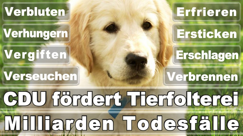 Angela Merkel CDU Tierversuche Tierquälerei Hauptschule Realschule Grundschule Gymnasium (40)