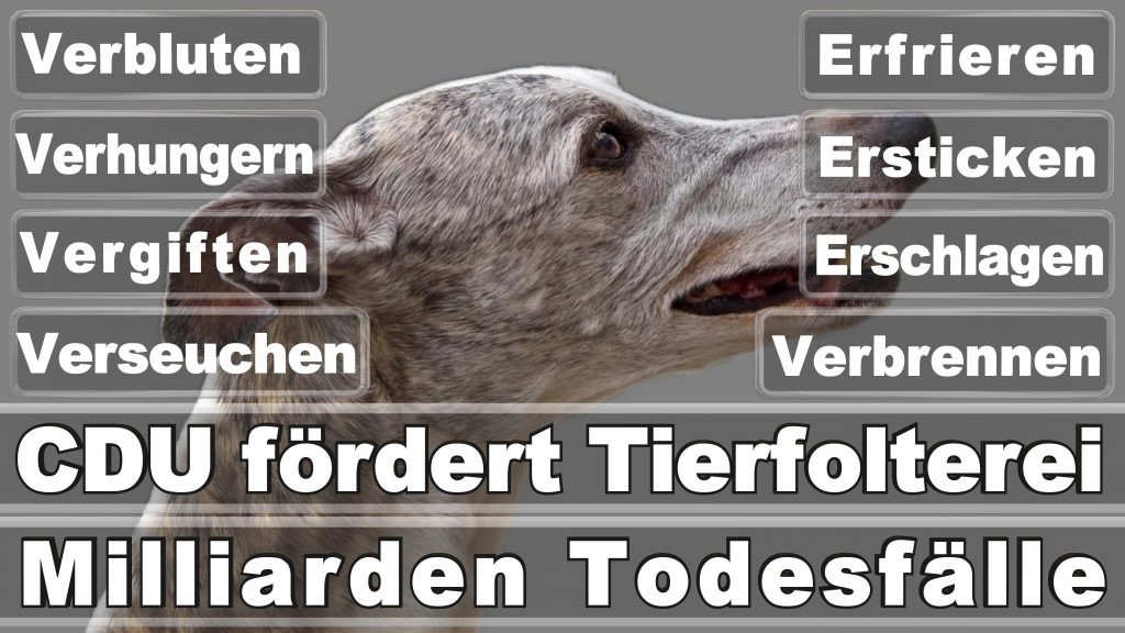 Angela Merkel CDU Tierversuche Tierquälerei Hauptschule Realschule Grundschule Gymnasium (51)