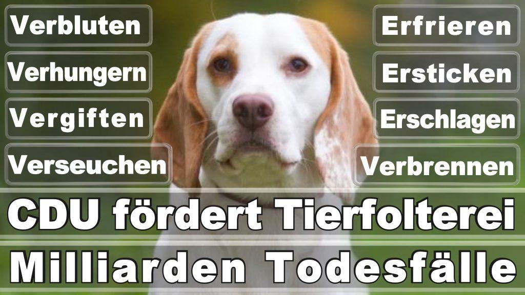 Angela Merkel CDU Tierversuche Tierquälerei Hauptschule Realschule Grundschule Gymnasium (57)