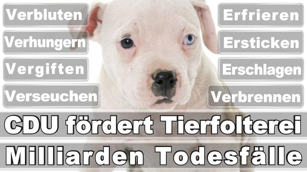 Angela Merkel CDU Tierversuche Tierquälerei Hauptschule Realschule Grundschule Gymnasium (58)