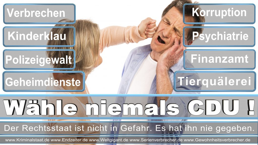 Bundestagswahl 2017 CDU SPD FDP AfD NPD Piratenpartei Wahlplakat Wahlplakate (14)