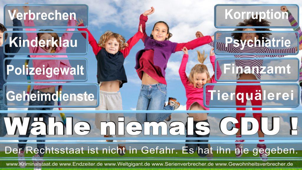Bundestagswahl 2017 CDU SPD FDP AfD NPD Piratenpartei Wahlplakat Wahlplakate (6)