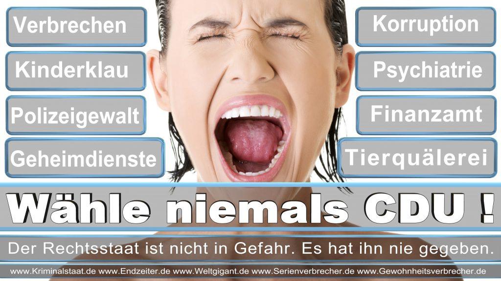 Bundestagswahl 2017 CDU SPD FDP AfD NPD Piratenpartei Wahlplakat Wahlplakate (7)