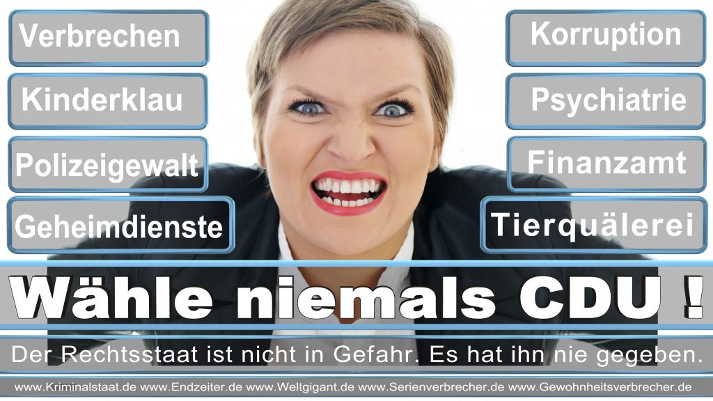 Bundestagswahl 2017 CDU SPD FDP AfD NPD Piratenpartei Wahlplakat Wahlplakate (8)