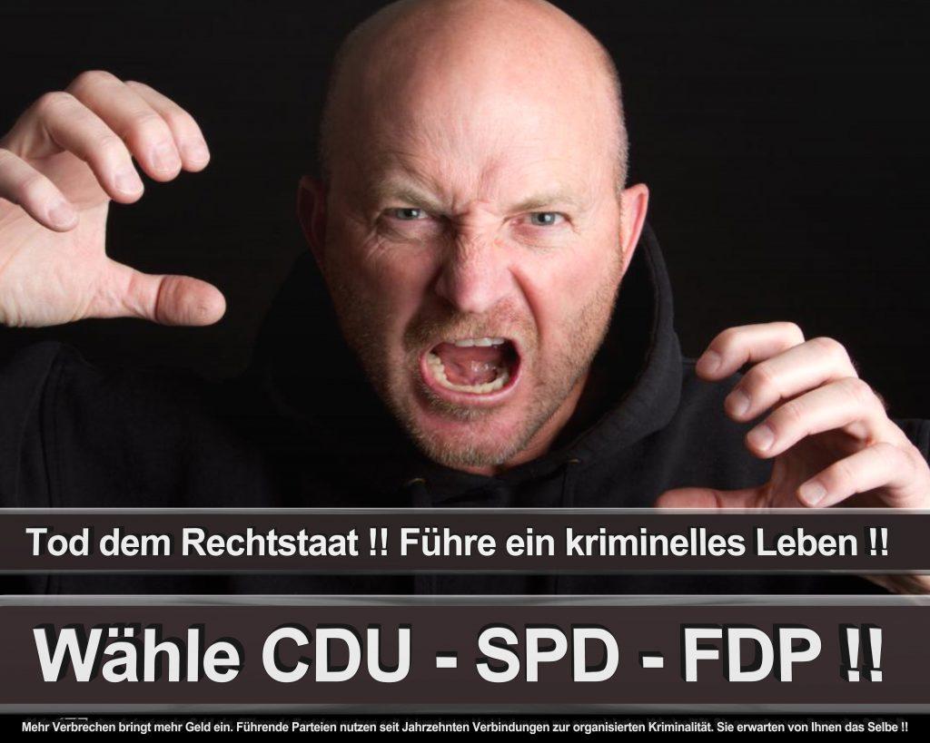 Bundestagswahl 2017 Wahlplakate CDU SPD Angela Merkel Frauke Petry AfD (23)