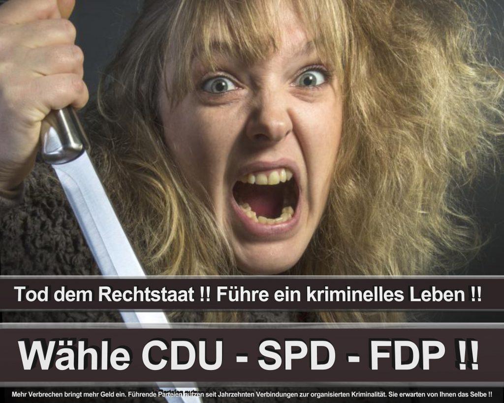 Bundestagswahl 2017 Wahlplakate CDU SPD Angela Merkel Frauke Petry AfD (31)