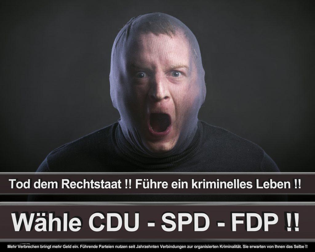 Bundestagswahl 2017 Wahlplakate CDU SPD Angela Merkel Frauke Petry AfD (42)