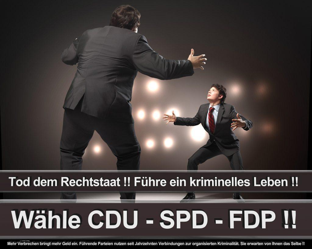 Bundestagswahl 2017 Wahlplakate CDU SPD Angela Merkel Frauke Petry AfD (50)