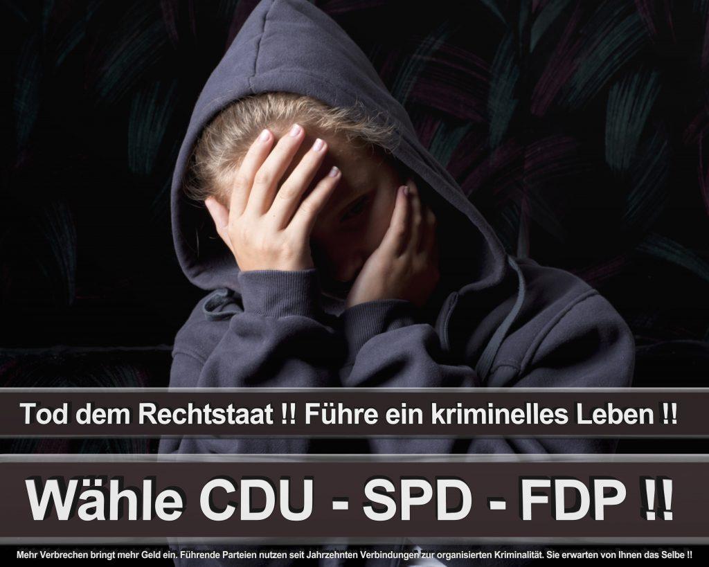 Bundestagswahl 2017 Wahlplakate CDU SPD Angela Merkel Frauke Petry AfD (55)
