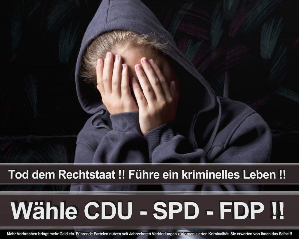 Bundestagswahl 2017 Wahlplakate CDU SPD Angela Merkel Frauke Petry AfD (56)