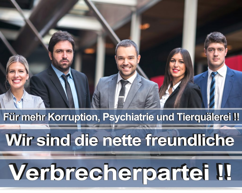 Bundestagswahl 2017 Wahlplakate CDU SPD Angela Merkel Frauke Petry AfD RTL ZDF ARD ARTE (0)