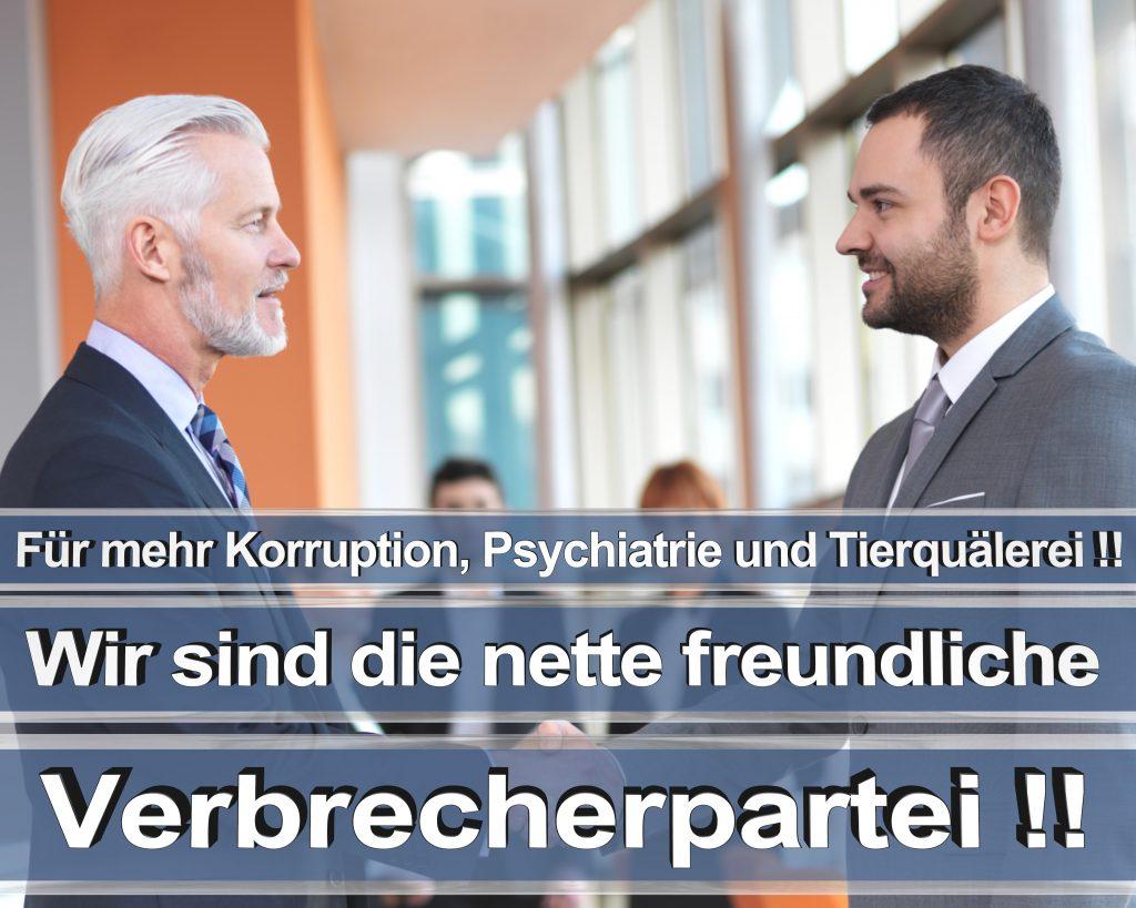 Bundestagswahl 2017 Wahlplakate CDU SPD Angela Merkel Frauke Petry AfD RTL ZDF ARD ARTE (13)