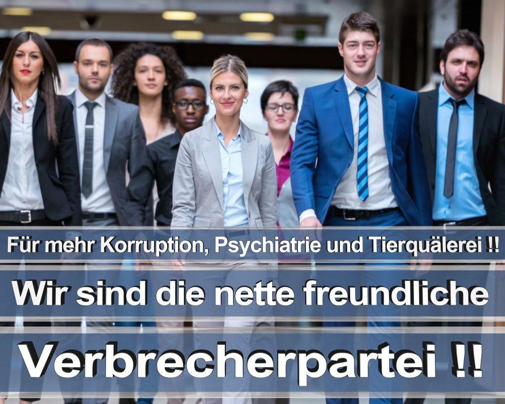 Bundestagswahl 2017 Wahlplakate CDU SPD Angela Merkel Frauke Petry AfD RTL ZDF ARD ARTE (16)