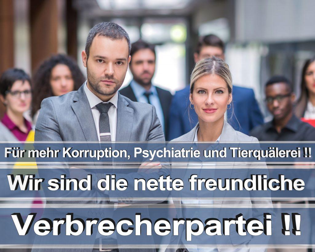 Bundestagswahl 2017 Wahlplakate CDU SPD Angela Merkel Frauke Petry AfD RTL ZDF ARD ARTE (17)