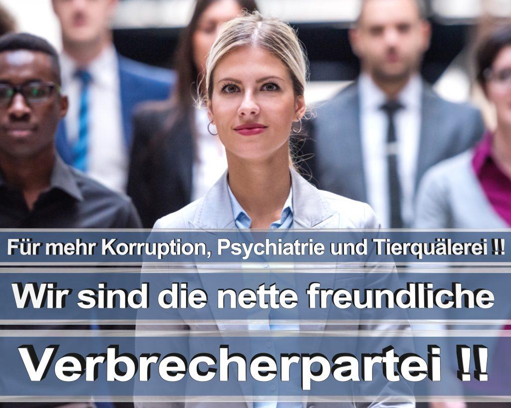 Bundestagswahl 2017 Wahlplakate CDU SPD Angela Merkel Frauke Petry AfD RTL ZDF ARD ARTE (3)