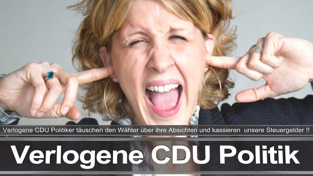 Bundestagswahl 2017 CDU Angela Merkel Frauke Petry AfD Termin Berlin Hamburg (1)