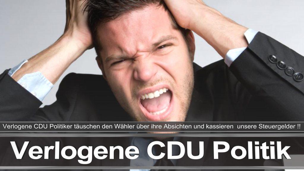 Bundestagswahl 2017 CDU Angela Merkel Frauke Petry AfD Termin Berlin Hamburg (2)