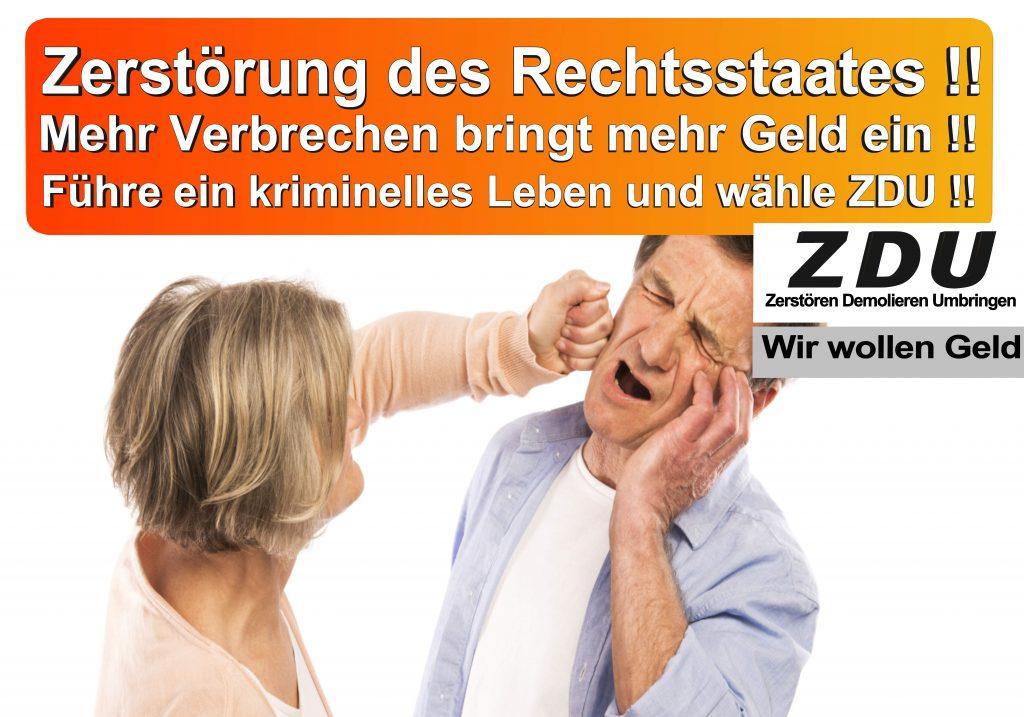 Bundestagswahl 2017 CDU SPD AfD Wahlplakat Angela Merkel CDU CSU (10)