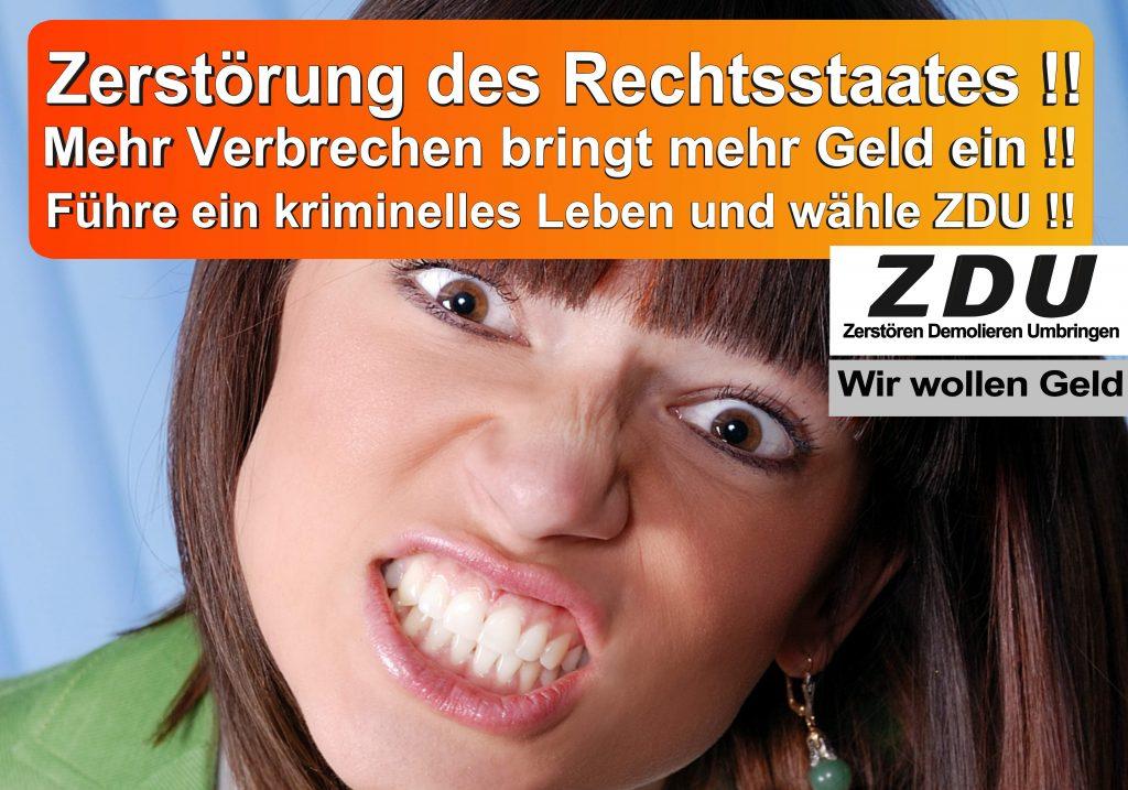 Bundestagswahl 2017 CDU SPD AfD Wahlplakat Angela Merkel CDU CSU (14)