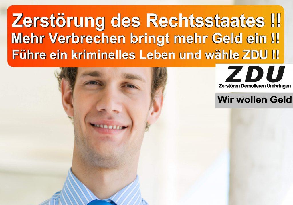 Bundestagswahl 2017 CDU SPD AfD Wahlplakat Angela Merkel CDU CSU (22)