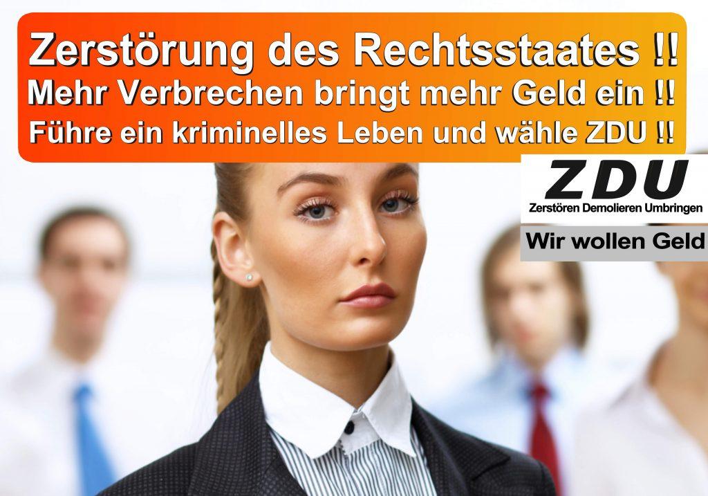 Bundestagswahl 2017 CDU SPD AfD Wahlplakat Angela Merkel CDU CSU (25)