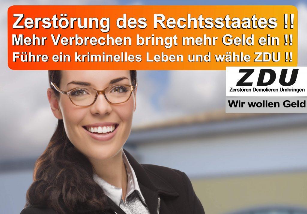 Bundestagswahl 2017 CDU SPD AfD Wahlplakat Angela Merkel CDU CSU (29)