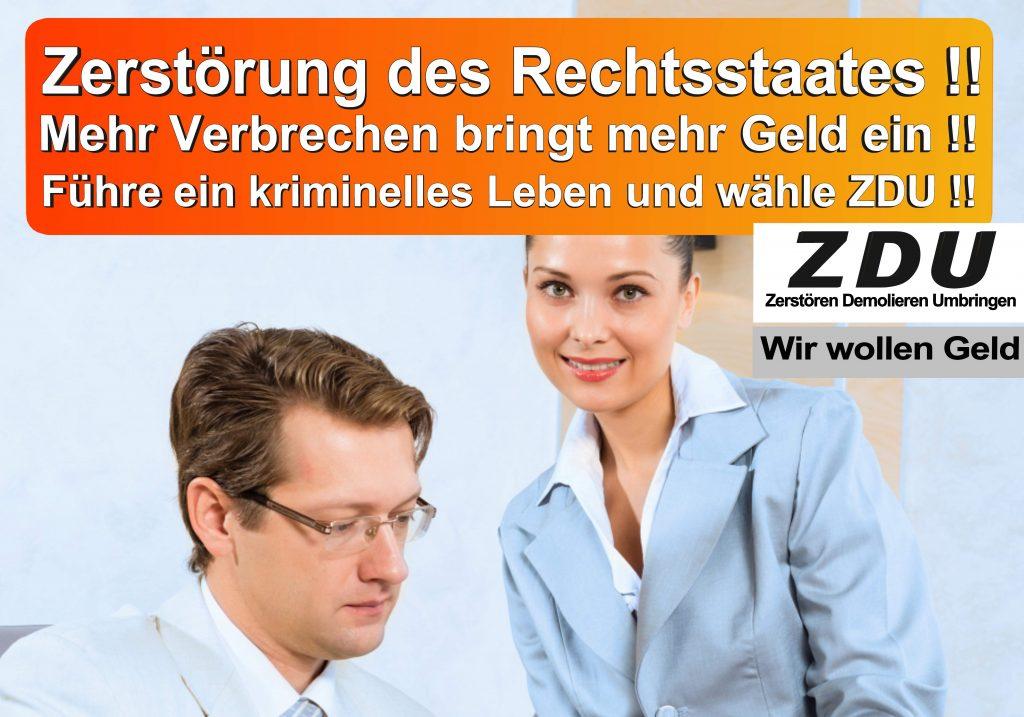 Bundestagswahl 2017 CDU SPD AfD Wahlplakat Bundestagswahl 2017 Umfrage Stimmzettel Angela Merkel CDU CSU (4)
