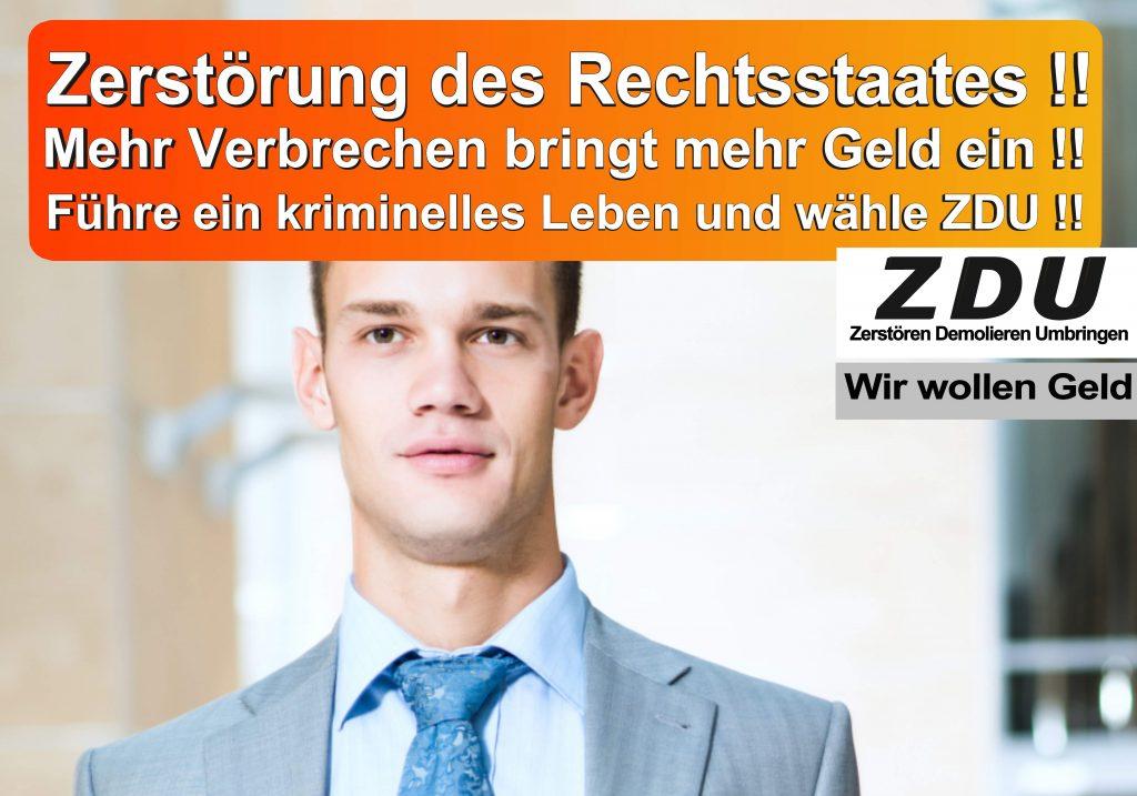 Bundestagswahl 2017 CDU SPD AfD Wahlplakat Angela Merkel CDU CSU (5)