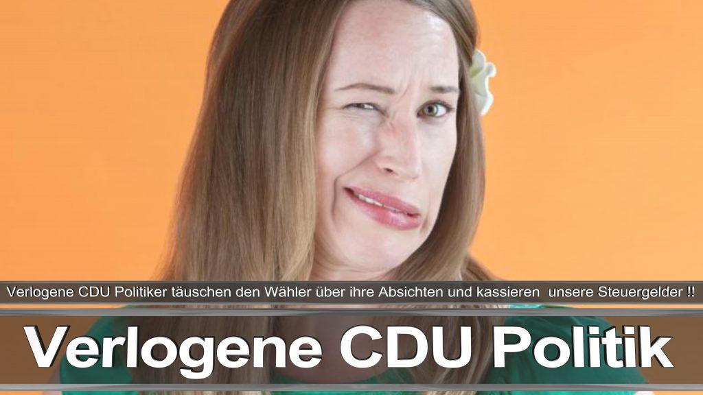 Bundestagswahl 2017 Wahlplakat Angela Merkel CDU CSU SPD AFD NPD (1)