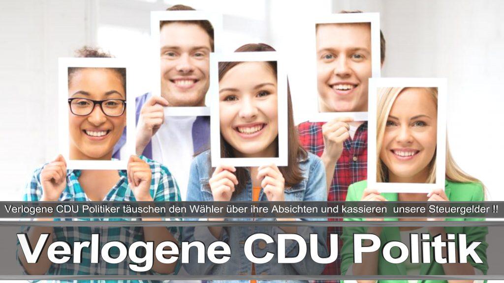 Bundestagswahl 2017 Wahlplakat Angela Merkel CDU CSU SPD AFD NPD (10)