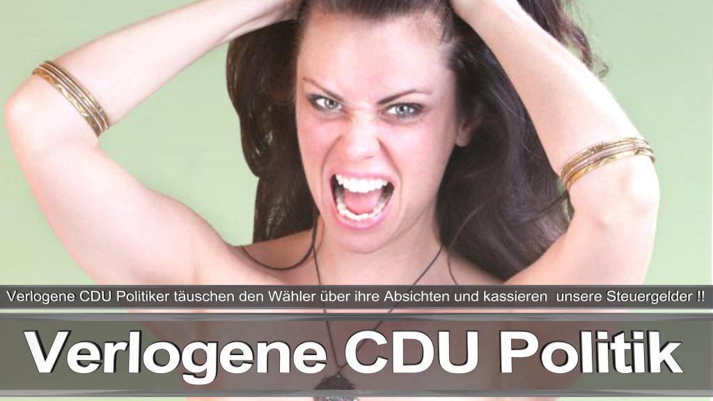 Bundestagswahl 2017 Wahlplakat Angela Merkel CDU CSU SPD AFD NPD (11)