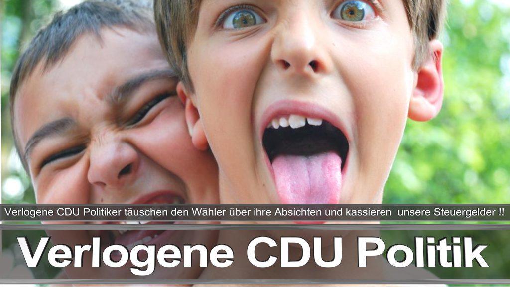 Bundestagswahl 2017 Wahlplakat Bundestagswahl 2017 Umfrage Stimmzettel Angela Merkel CDU CSU SPD AFD NPD (12)