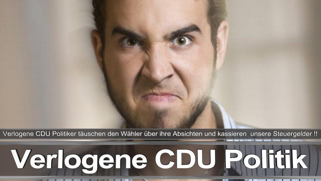Bundestagswahl 2017 Wahlplakat Angela Merkel CDU CSU SPD AFD NPD (13)