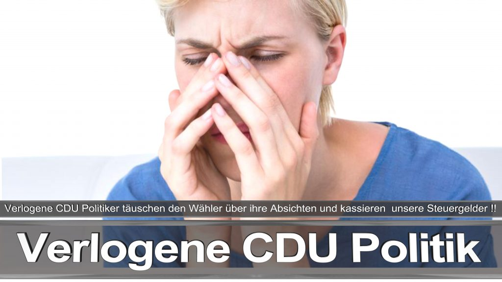 Bundestagswahl 2017 Wahlplakat Angela Merkel CDU CSU SPD AFD NPD (15)