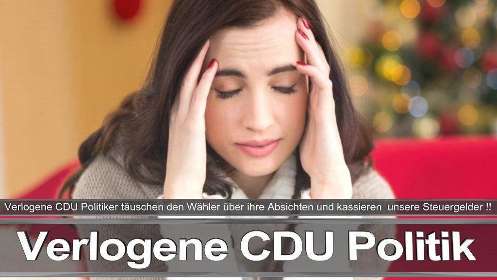Bundestagswahl 2017 Wahlplakat Angela Merkel CDU CSU SPD AFD NPD (16)