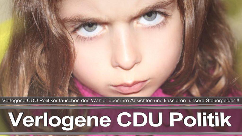 Bundestagswahl 2017 Wahlplakat Angela Merkel CDU CSU SPD AFD NPD (18)