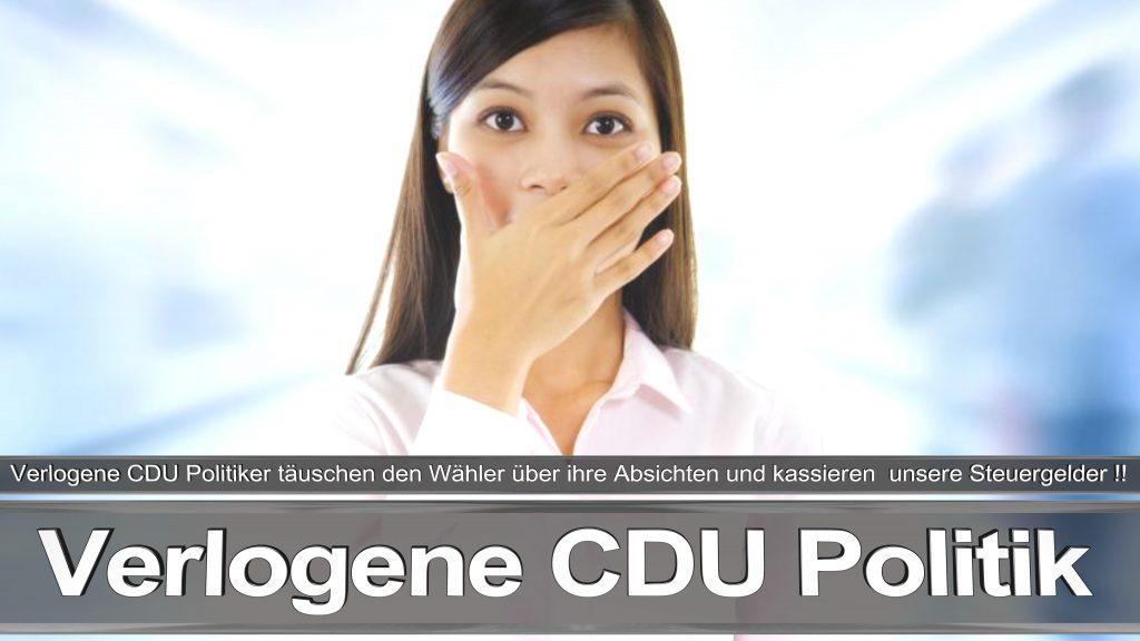Bundestagswahl 2017 Wahlplakat Angela Merkel CDU CSU SPD AFD NPD (19)