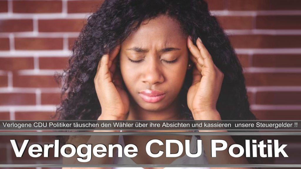 Bundestagswahl 2017 Wahlplakat Angela Merkel CDU CSU SPD AFD NPD (2)