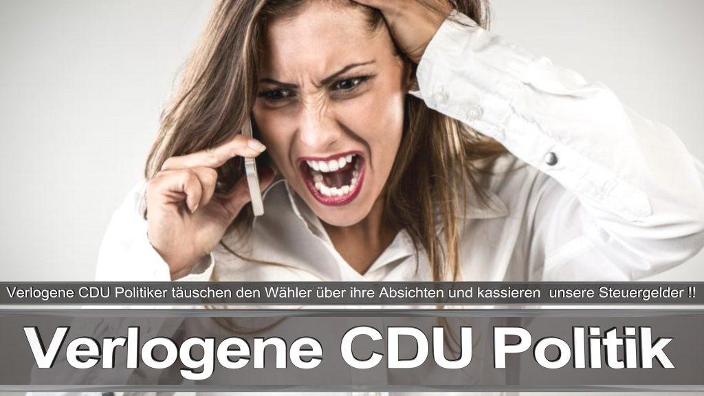 Bundestagswahl 2017 Wahlplakat Bundestagswahl 2017 Umfrage Stimmzettel Angela Merkel CDU CSU SPD AFD NPD (20)