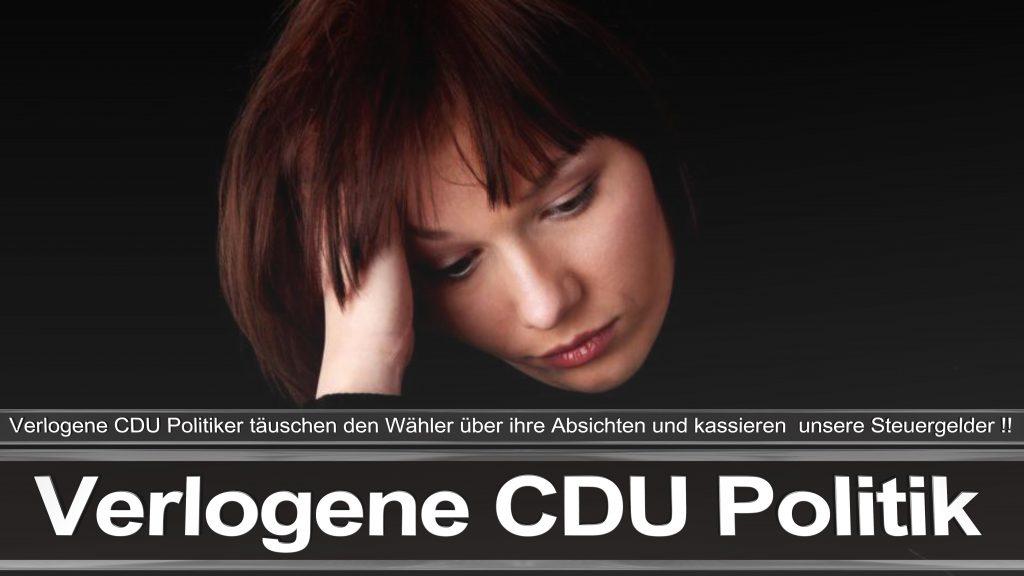 Bundestagswahl 2017 Wahlplakat Bundestagswahl 2017 Umfrage Stimmzettel Angela Merkel CDU CSU SPD AFD NPD (25)
