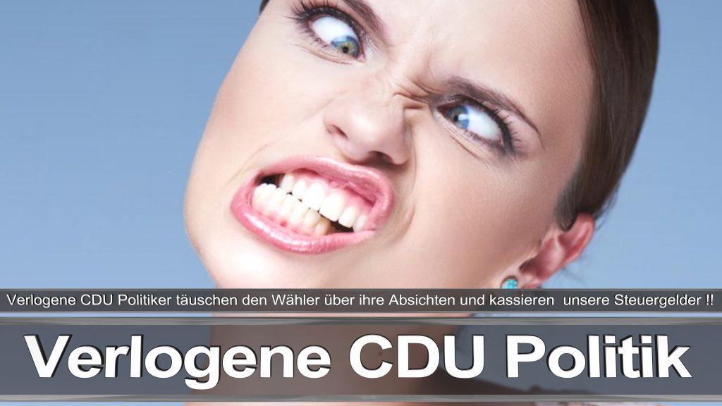Bundestagswahl 2017 Wahlplakat Bundestagswahl 2017 Umfrage Stimmzettel Angela Merkel CDU CSU SPD AFD NPD (26)