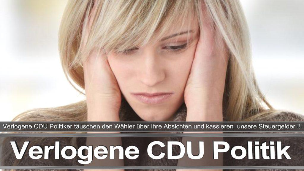 Bundestagswahl 2017 Wahlplakat Angela Merkel CDU CSU SPD AFD NPD (27)