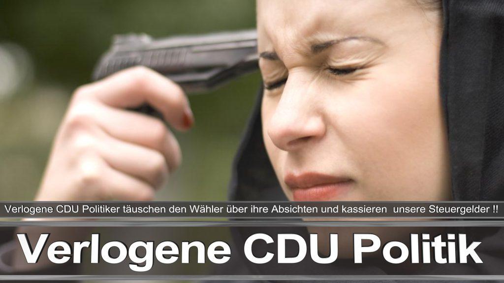 Bundestagswahl 2017 Wahlplakat Bundestagswahl 2017 Umfrage Stimmzettel Angela Merkel CDU CSU SPD AFD NPD (29)